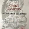 Celebrating Valentine CHCZ